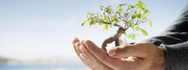 responsabilidade-socio-ambiental1